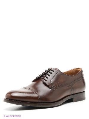 Туфли GEOX. Цвет: темно-коричневый
