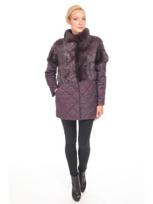 Куртка PRIMA WOMAN RM008-1/0330-019/1514