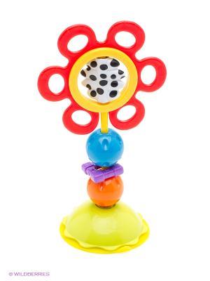 Игрушка-погремушка Playgro. Цвет: красный, оранжевый, желтый, белый, черный, салатовый, голубой, фиолетовый