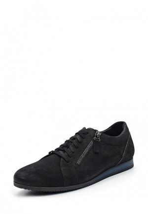 Ботинки Giatoma Niccoli. Цвет: черный