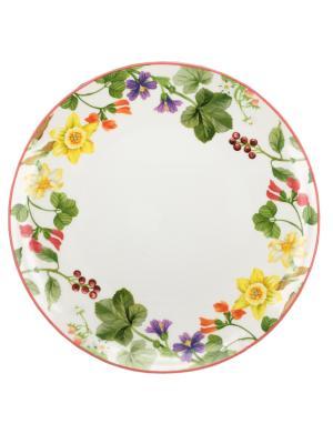 Блюдо круглое  30см. Tognana porcelane. Цвет: белый