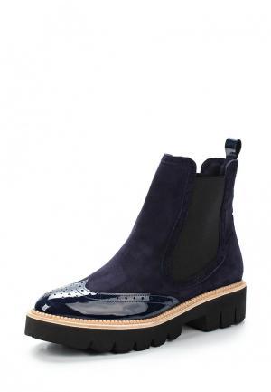 Ботинки Conhpol-Bis. Цвет: синий