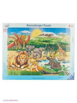 Пазл Животный мир Африки  36шт Ravensburger. Цвет: зеленый