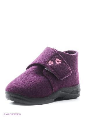 Ботинки SKIDDERS. Цвет: фиолетовый