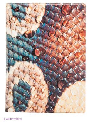 Обложка для паспорта Snakeskin Kawaii Factory. Цвет: морская волна, оранжевый