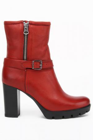 Ботинки Indiana. Цвет: бордовый