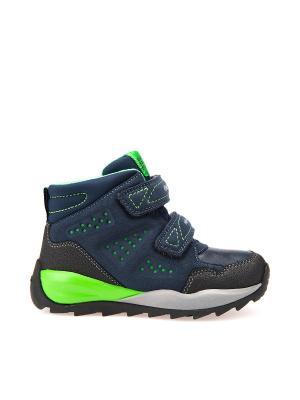 Ботинки GEOX. Цвет: темно-синий, серо-зеленый