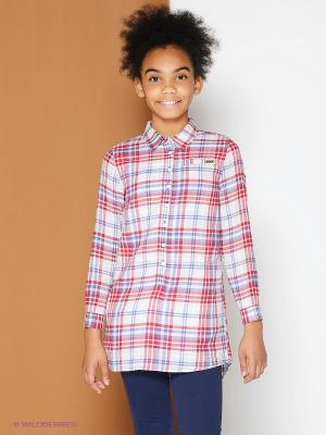 Рубашка PEPE JEANS LONDON. Цвет: красный, светло-голубой