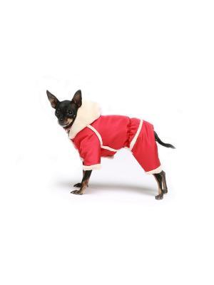 Дубленка для собак Ай Да Пес. Цвет: красный