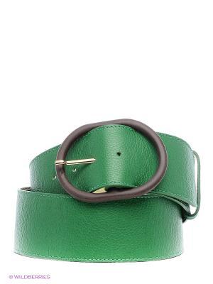 Ремень Eleganzza. Цвет: зеленый