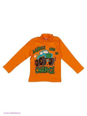 Водолазка Bonito kids. Цвет: оранжевый