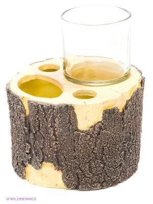 Набор из стакана и подставки для зубных щёток Blonder Home. Цвет: коричневый