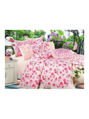 Комплект постельного белья 2 сп. BegAl. Цвет: персиковый, розовый