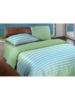 Комплект постельного белья 1,5 бязь  Stripe Green Wenge. Цвет: зеленый