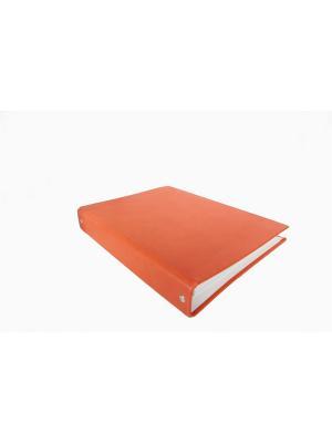 Тетрадь на кольцах Триумф. Цвет: оранжевый