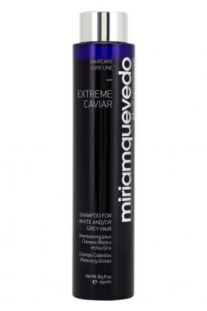 Шампунь для светлых или седых волос с экстрактом черной икры Extreme Caviar For White & Grey Hair, 250ml Miriamquevedo. Цвет: multicolor