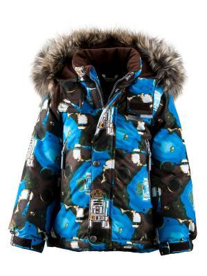 Куртка Kerry. Цвет: коричневый, голубой
