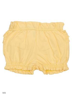 Трикотажные шорты Modis. Цвет: светло-желтый