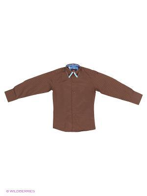 Рубашки Alex DANDY. Цвет: коричневый