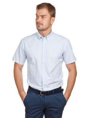 Рубашка Oxford McNeal. Цвет: светло-голубой