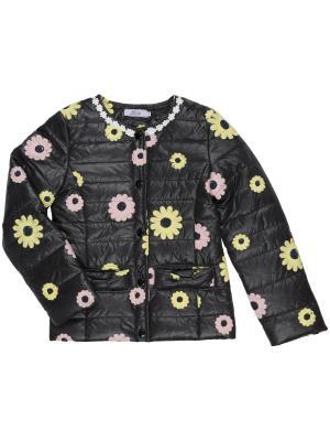 Куртка Born. Цвет: черный