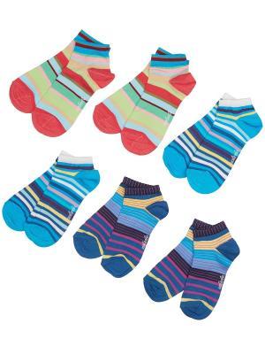 Носки, 6 пар Malerba. Цвет: синий, голубой, красный