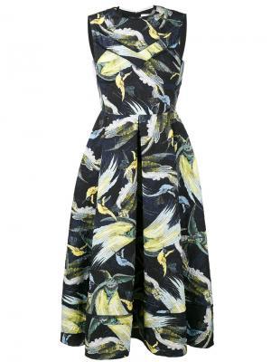 Платье с принтом птиц Alana Erdem. Цвет: чёрный