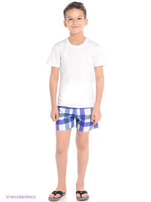 Шорты Y CHECK SH ML Adidas. Цвет: фиолетовый, синий