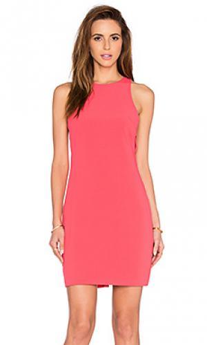 Платье с вырезами kate Bishop + Young. Цвет: коралл