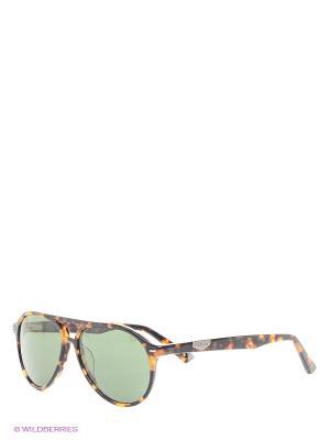 Очки солнцезащитные RY 504 02 Replay. Цвет: коричневый
