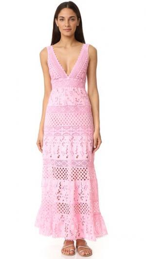 Кружевное платье без рукавов Temptation Positano. Цвет: розовый