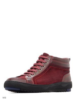 Ботинки Companion. Цвет: красный