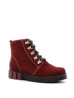 Ботинки BELWEST. Цвет: бордовый