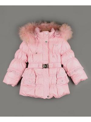 Куртка BTE Beetle. Цвет: розовый