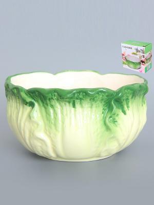 Салатник Капуста Elan Gallery. Цвет: зеленый, белый