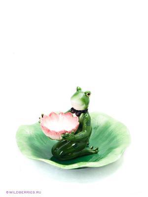 Набор Лягушка Pavone. Цвет: зеленый, розовый