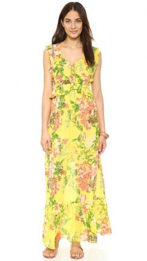 Макси-платье с воланами plenty by TRACY REESE. Цвет: цветочный рисунок джакарта