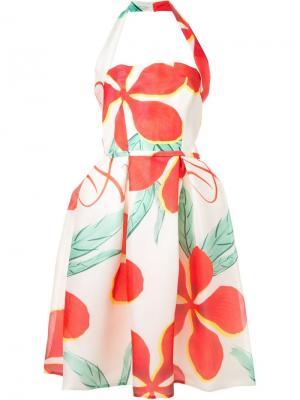 Платье с цветочным принтом Ingie Paris. Цвет: белый
