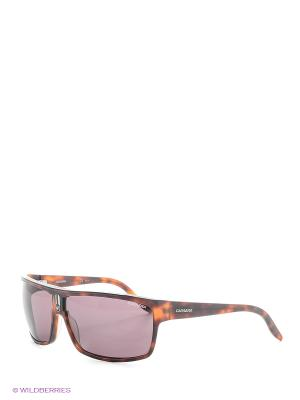 Солнцезащитные очки CARRERA. Цвет: темно-бордовый, рыжий