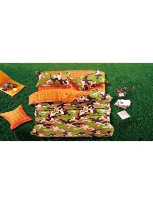 Комплект постельного белья 2сп (наволочка р.70х70 2шт) сатин Танаис. Цвет: оранжевый, коричневый, кремовый, салатовый, черный