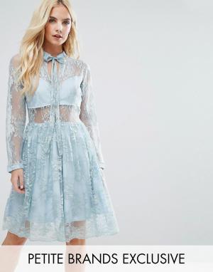 John Zack Petite Кружевное платье мини с завязкой. Цвет: зеленый
