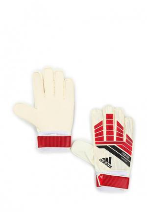 Перчатки вратарские adidas. Цвет: бежевый