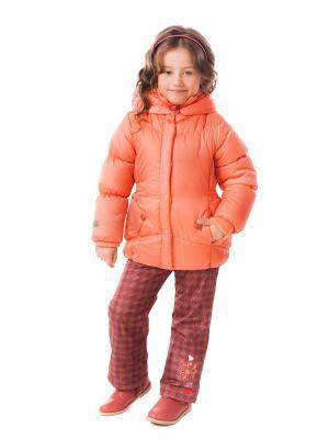 Куртка PlayToday. Цвет: оранжевый
