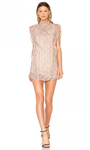 Кружевное платье alaina Marissa Webb. Цвет: розовый
