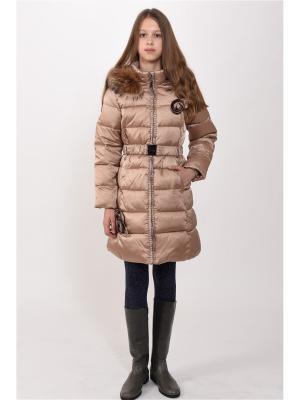 Пальто TOPKLAER. Цвет: кремовый