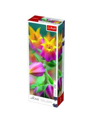 Пазл 300 дет. Домашняя галерея - Расцетающие цветы Trefl. Цвет: белый