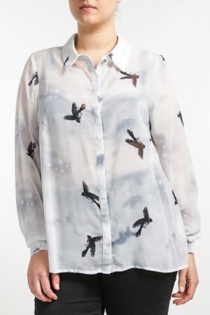 Рубашка Zizzi. Цвет: черный