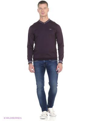 Пуловер Dasmann. Цвет: лиловый