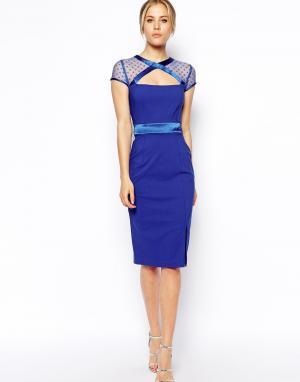 Tempest Платье со вставками из сеточки по вороту GiGi. Цвет: cobalt blue 5555,54