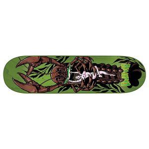 Дека для скейтборда  Creek Freaks Team 32.04 x 8.25 (21 см) Creature. Цвет: зеленый,мультиколор